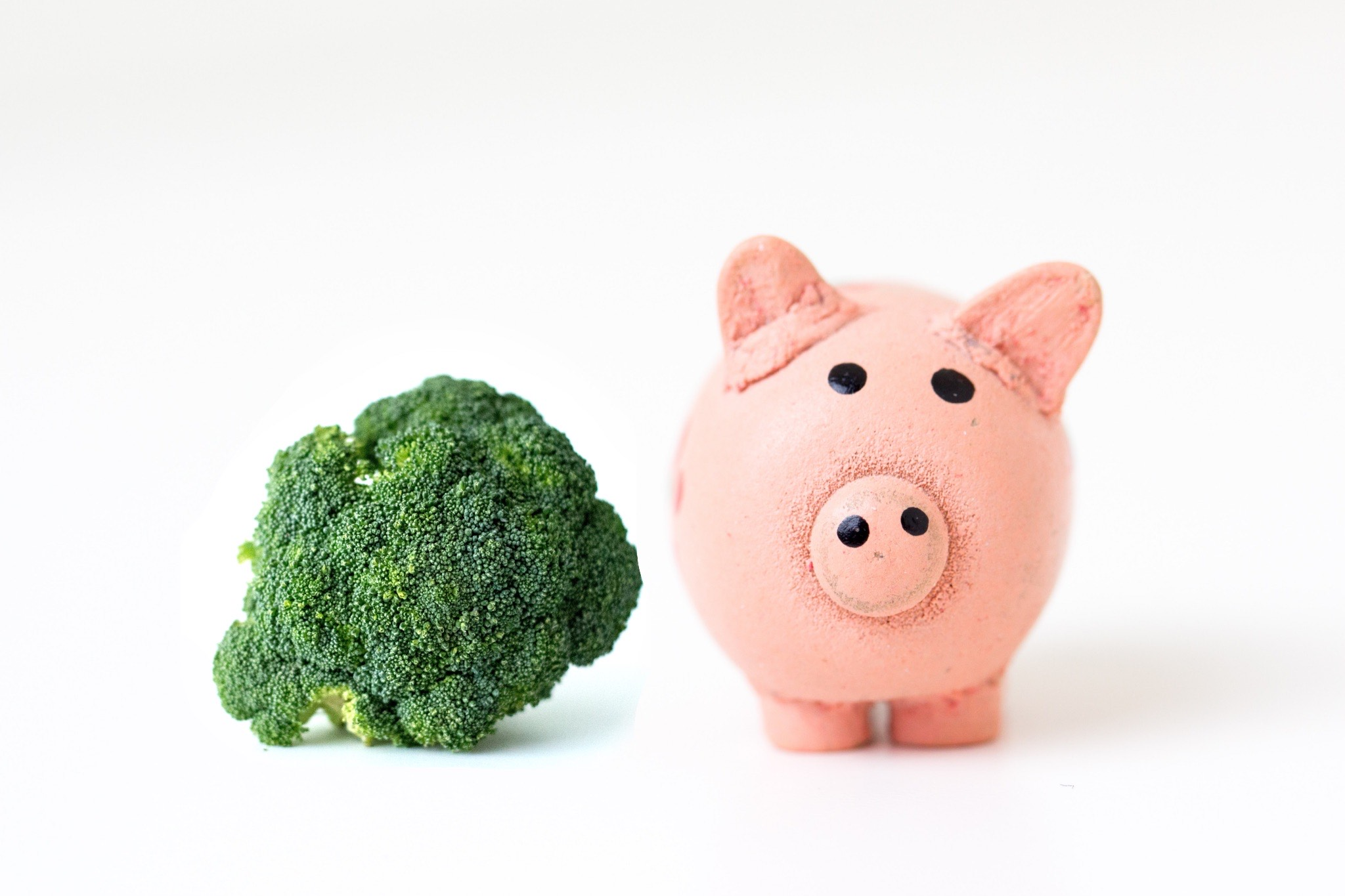 Shopping Plant-Based on a Tight Budget: 7 Tips